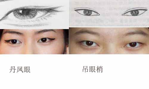 丹凤眼和吊眼梢都眼尾都往上翘,那丹凤眼和吊眼梢有什么区别呢?