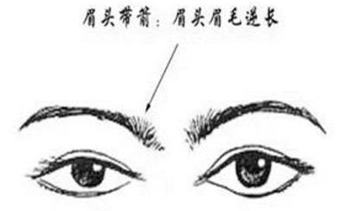 眉头的眉毛直立(眉头带箭)的性格感情运势