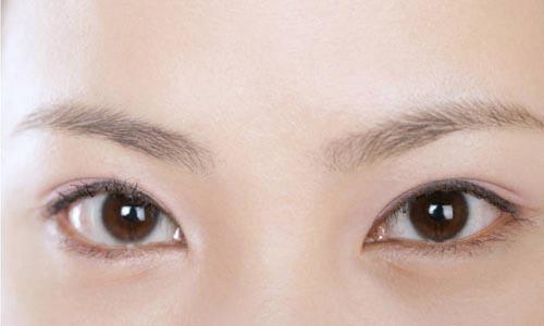 为什么眉毛称为兄弟宫,在面相学上有什么深层含义